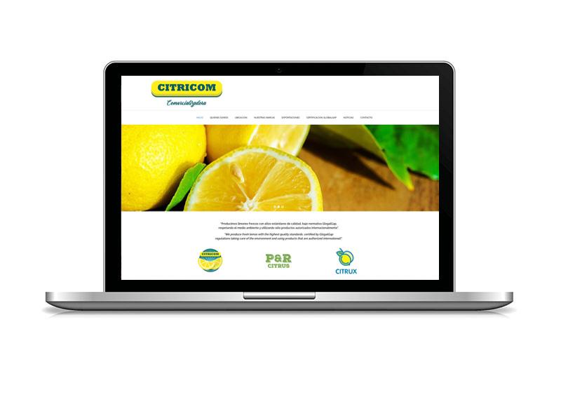 diseño_web - citricom